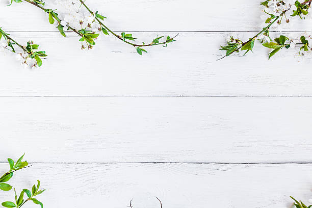 Free wood background with flower images pictures and royalty free apple flowers on white wooden background mightylinksfo Images