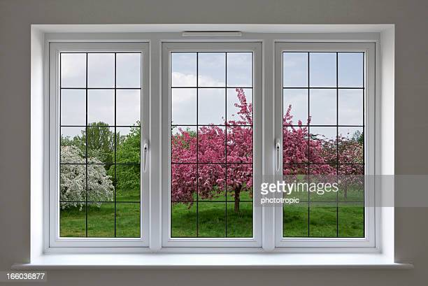 apple orchard through leaded glass window - symmetry stock photos and pictures