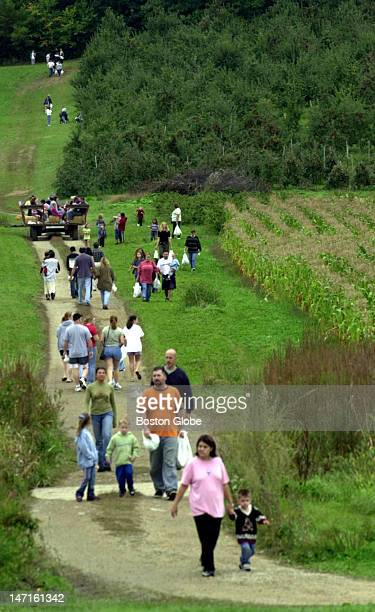 Apple pickers walk to and from the orchard at Cider Hill Farm on Fern Avenue