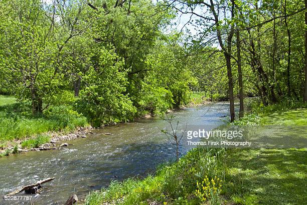apple river in illinois -  firak stock pictures, royalty-free photos & images