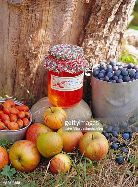 Apple, Sloe and Rosehip jam and fruit