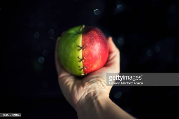 apple that symbolizes healing. - snow white stock photos and pictures