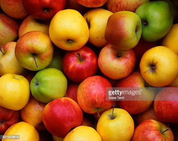 Apples at Farmer's Market