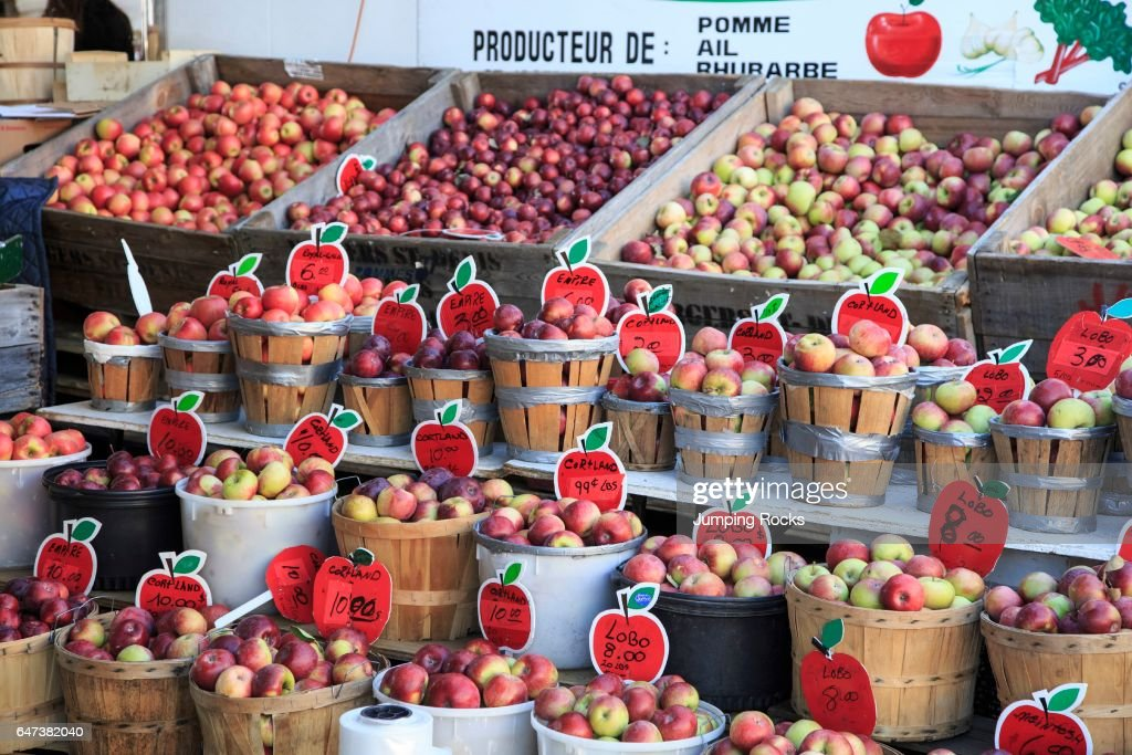 https://media.gettyimages.com/photos/apples-at-jean-talon-market-montreal-quebec-canada-picture-id647382040