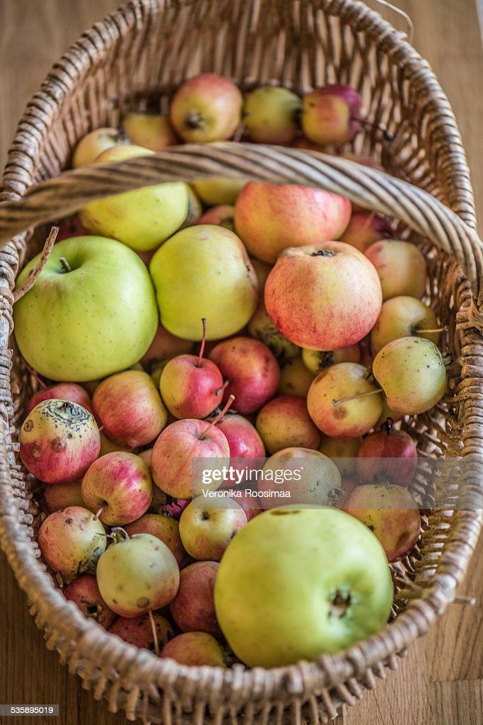 りんごのバスケット  : ストックフォト
