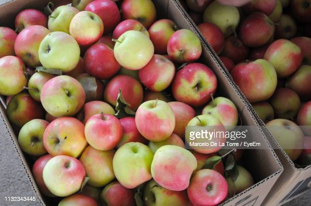 apples in cardboard boxes at market for sale - apple event stock photos and pictures