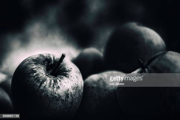 apples in the dark - rob castro stock pictures, royalty-free photos & images