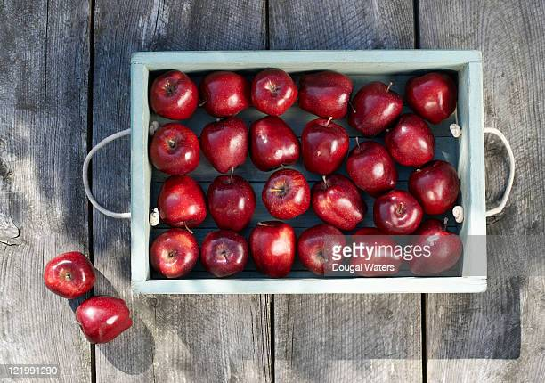 Apples in tray on rustic table.