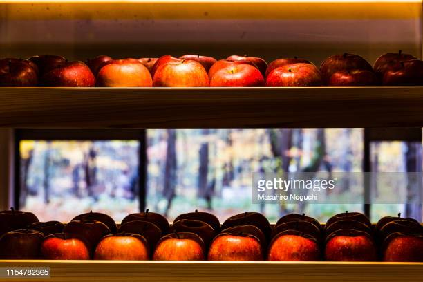 apples on display in a window - aomori prefecture stock pictures, royalty-free photos & images