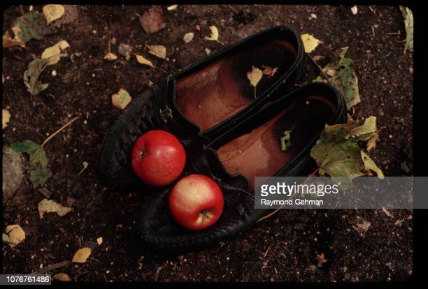 Apples on Shoes