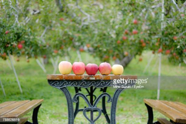 Apples On Table By Seats At Orchard