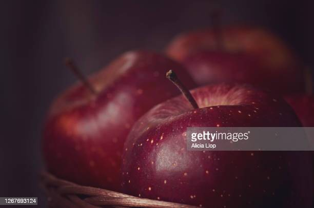 apples - succulent stock pictures, royalty-free photos & images