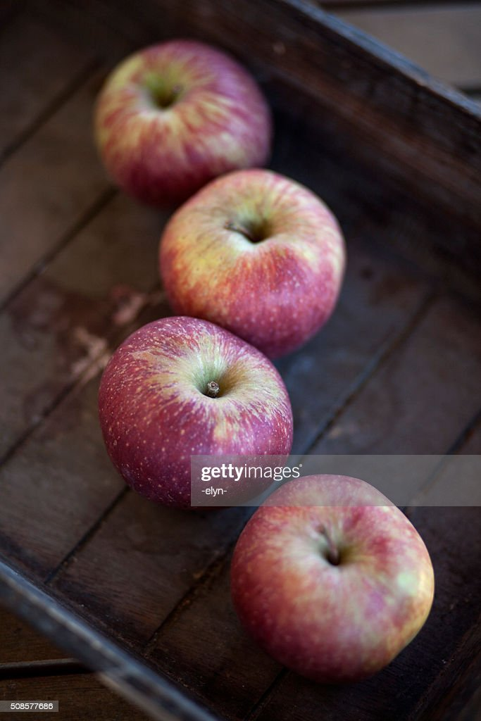 apples : Bildbanksbilder