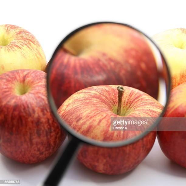 Apples under Magnifiing Glas