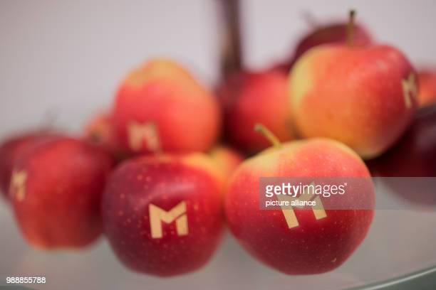 Apples with the logo of the Metro AG lie in a bowl at the balance press conference of the Metro AG in Duesseldorf Germany 13 December 2017 Photo Rolf...