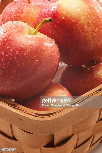 Apples with water droplets in a basket