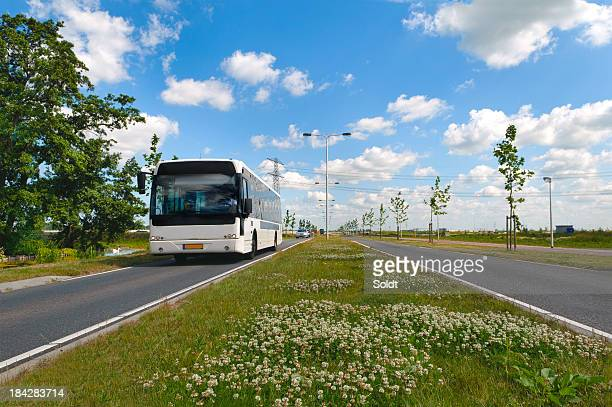 Approaching bus in dutch landscape
