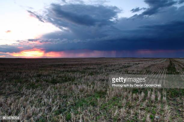Approaching Storm Over Field at Sunset
