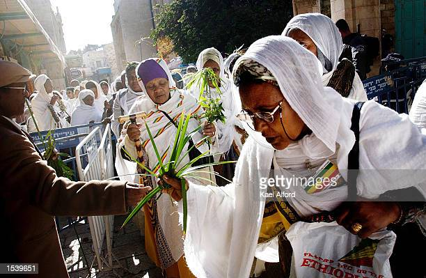 Approximately 200 Ethiopian coptic Christians arrive at the church of the Holy Sepulchre built on the site where Christ was supposedly crucified on...