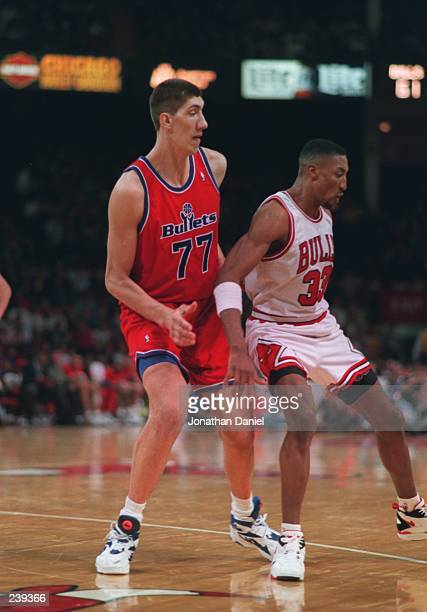 Center Gheorghe Muresan of the Washington Bullets guards forward Scottie Pippen of the Chicago Bulls at the United Center in Chicago Illinois...