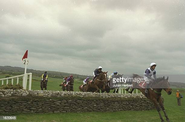 Risk of Thunder leads the field at Punchestown in Ireland Mandatory Credit Julian Herbert /Allsport