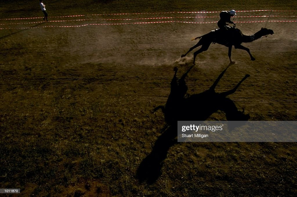 Baby 2B races during the Camel Cup at the Geelong Show grounds in Geelopng, Australia. \ Mandatory Credit: Stuart Milligan /Allsport