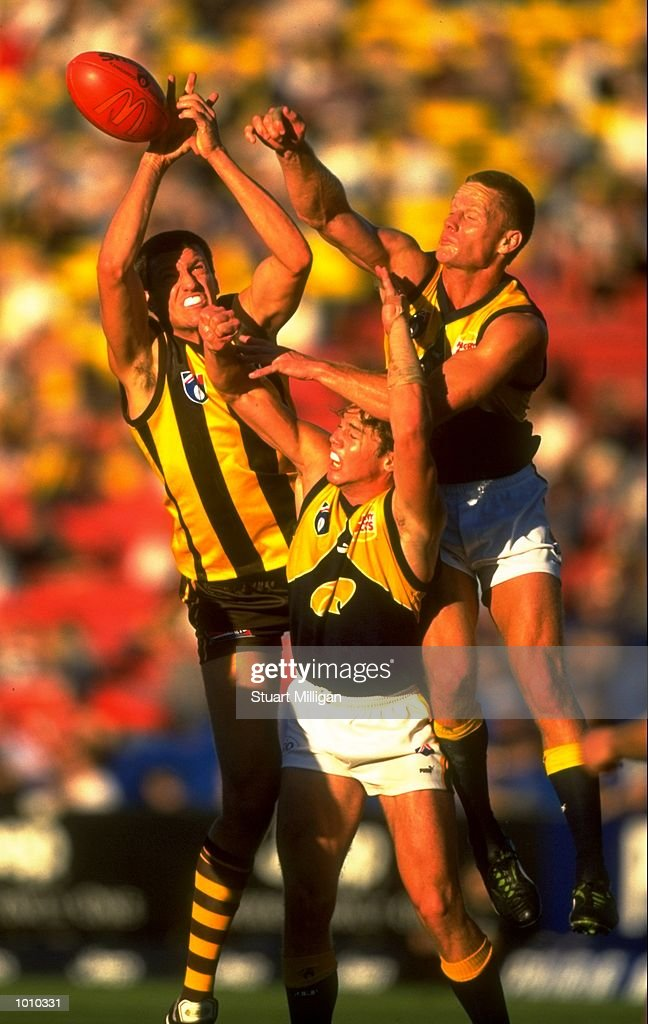 Paul Salmon of the Hawthorn Hawks competes for the ball with West Coast Eagles'' Michael Gardiner during the AFL Premiership Round 5 match at Waverley Park, Melbourne, Australia. The game finished with West Coast (94) defeating Hawthorn (64). \ Mandatory Credit: Stuart Milligan /Allsport