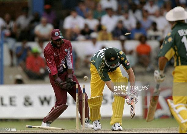 Tom Moody of Australia is bowled during the One Day International match against the West Indies played in Barbados Mandatory Credit Ben Radford...