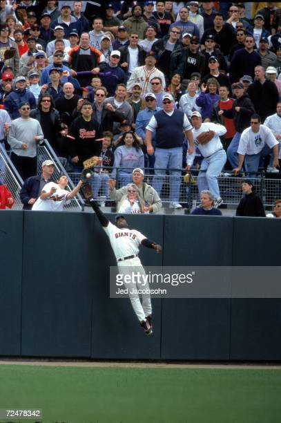 Barry Bonds of the San Francisco Giants reaches for the ball as a fan Rickie Navarrete age 15 of Redwood City CA catches it during the game against...