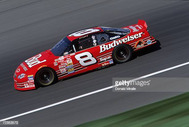 Dale Earnhardt Jr #8 is in action during the NAPA Auto Parts 500 Part of the NASCAR Winston Cup Series at the California Speedway in Fontana...