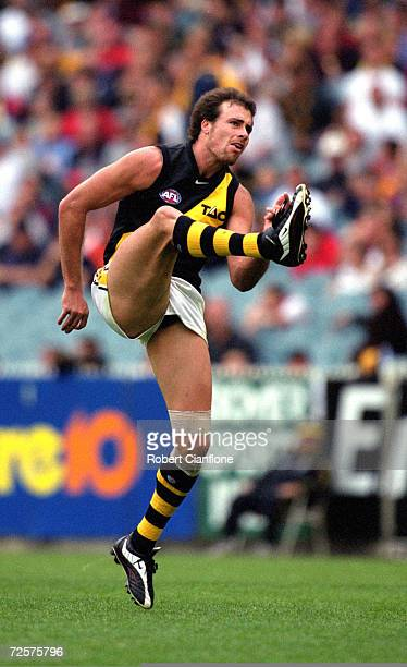 Matthew Richardson of Richmond in action during the AFL round 1 match played between the Melbourne Demons and the Richmond Tigers held at the...
