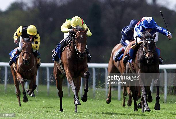 Paul Doe brings Rose Peel up the centre of the track to land The Brook Street Maiden Fillies Stakes run at Windsor DIGITAL IMAGE Mandatory Credit...