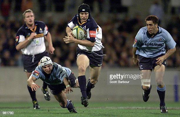Stephen Larkham of the Brumbies finds a gap to set up a try for Andrew Walker of the Brumbies during the Super 12 match between the ACT Brumbies and...