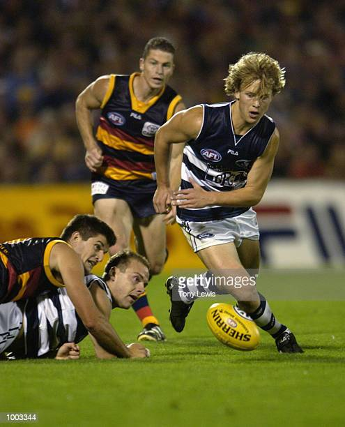 Gary Ablett for Geelong chases the ball as it bounces away from Aaron Lord for Geelong and Nathan Bassett#8 for Adelaide in the match between the...