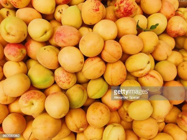 Apricots on a market stall at farmer's market, high angle view
