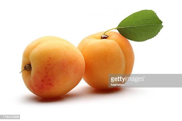 Abricots avec feuilles