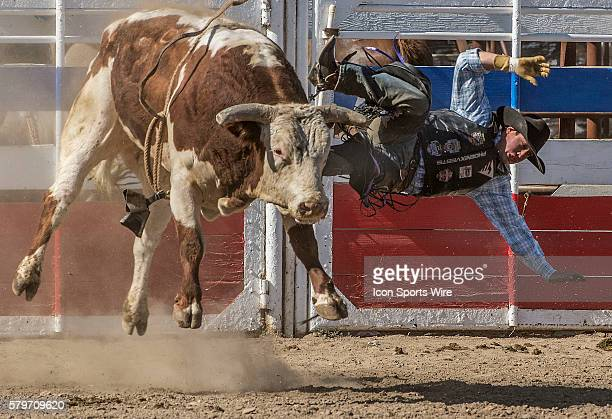Cody Samora leaves bull without a score at the 64th Annual Oakdale Rodeo on Sunday April 12 2015