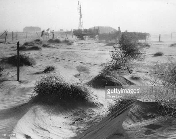 A dust bowl farmstead in Dallam County Texas showing the desolation produced by the dust and wind on the countryside adding to the problems of the...