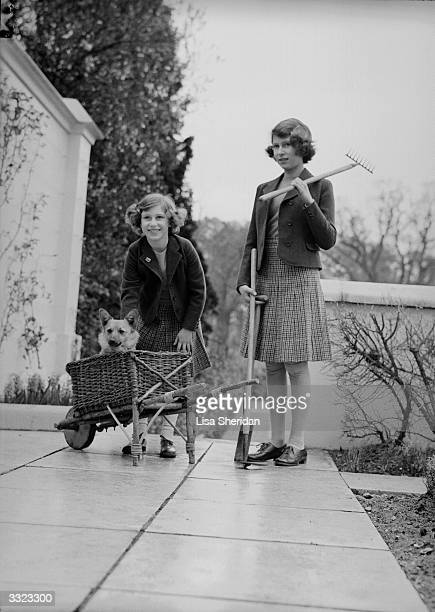 Princess Margaret Rose and Princess Elizabeth on a terrace of the Royal Lodge Windsor with gardening equipment and a pet corgi dog