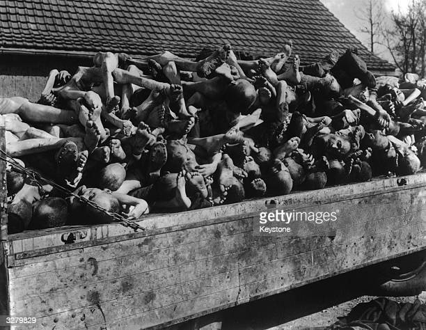 Example of Nazi brutality found at Nordhausen concentration camp by the American 3rd Armoured Division Hundreds of emaciated bodies covered barracks...