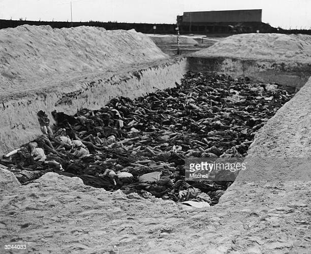 View of emaciated bodies heaped on top of one another in one of the mass graves at the Belsen concentration camp, after the camp was liberated during...