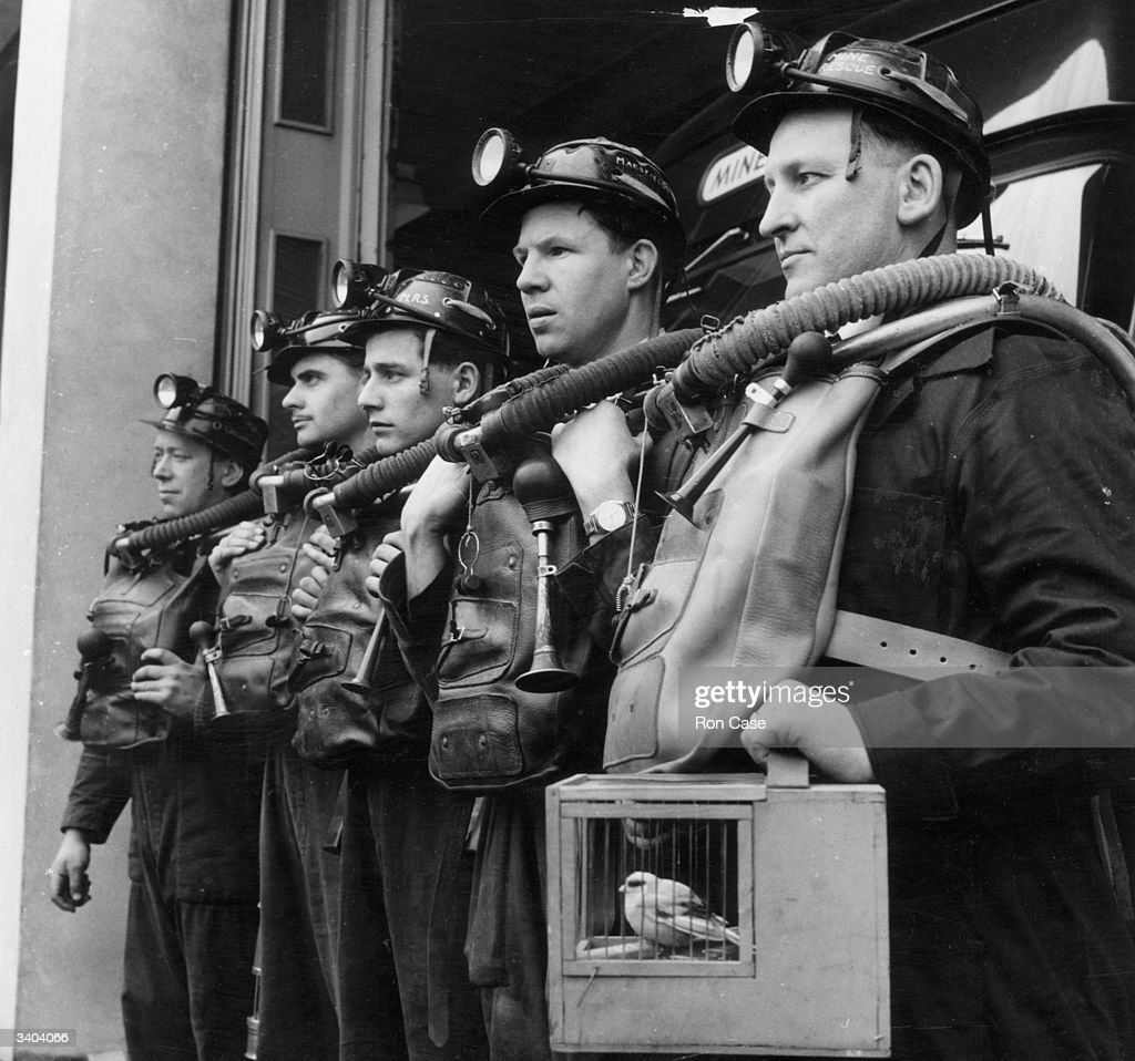 A coal mine rescue team line up for an initial briefing at the scene of an emergency. Trained at the National Coal Board Rescue Station at Mansfield, these men are taught every aspect of mine rescue technique and use every available technology, although the canary remains the best gas detector.