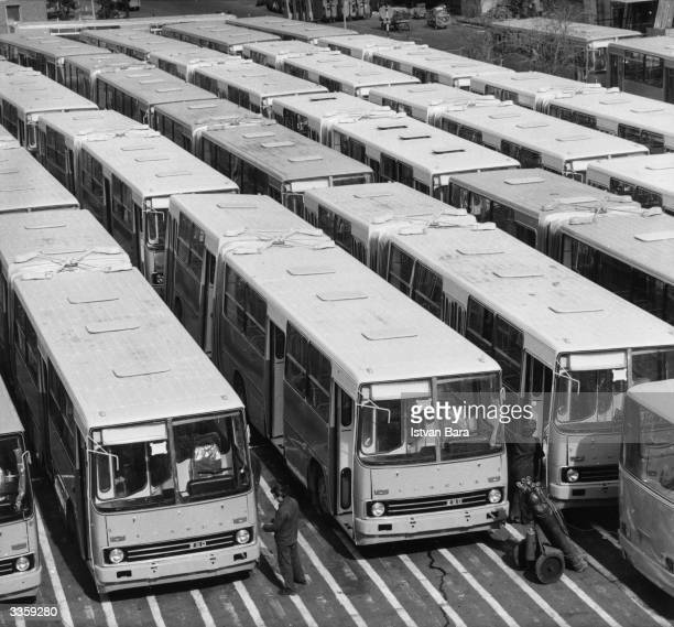 New Hungarian 'Ikarus' buses lined up outside their factory ready for export to the Soviet Union the German Democratic Republic and Peru