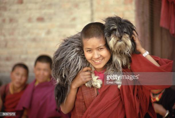 A young Buddhist monk with a Tibetan Lhasa Apso dog on his shoulders