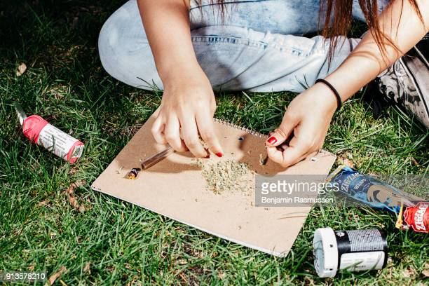 Alex Contreras rolls a joint in Civic Center Park during a 420 celebration in Denver Colorado on April 20 2015 In late November of 2000527 Coloradans...