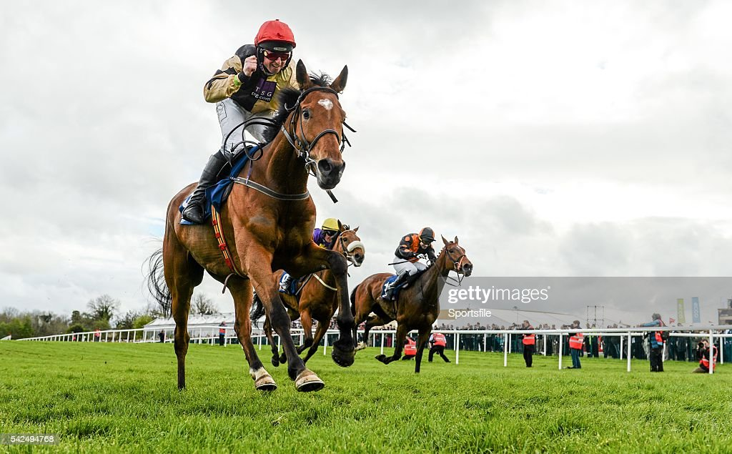 Horse Racing - Punchestown Festival : News Photo