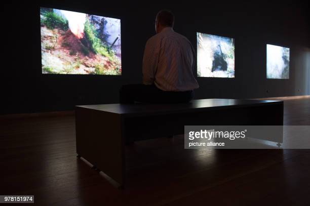 A man watching videos at the exhibition 'Covered in Time and History The Films of Ana Mendieta' at Martin Gropius Bau Photo Lisa Ducret/dpa