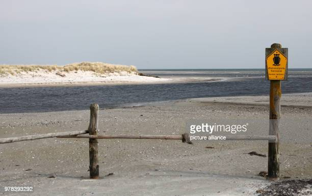 The access to the Darsser Ort emergency port in the core area of the Western Pomerania Lagoon Area National Park The access to the harbor silts up...
