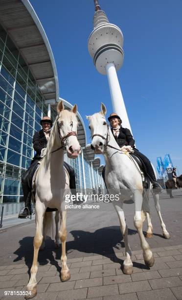 Riders with their horses standing during a photo session for the 'Hansepferd' fair Event organizers are expecting about 50 000 visitors from 20 to 22...