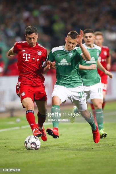 Soccer DFB Cup semifinal Werder Bremen FC Bayern Munich in the Weserstadion Bremen's Maximilian Eggestein and Munich's Robert Lewandowski fight for...
